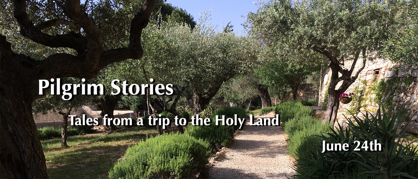Pilgrims Stories: Tales from a trip to the Holy Land